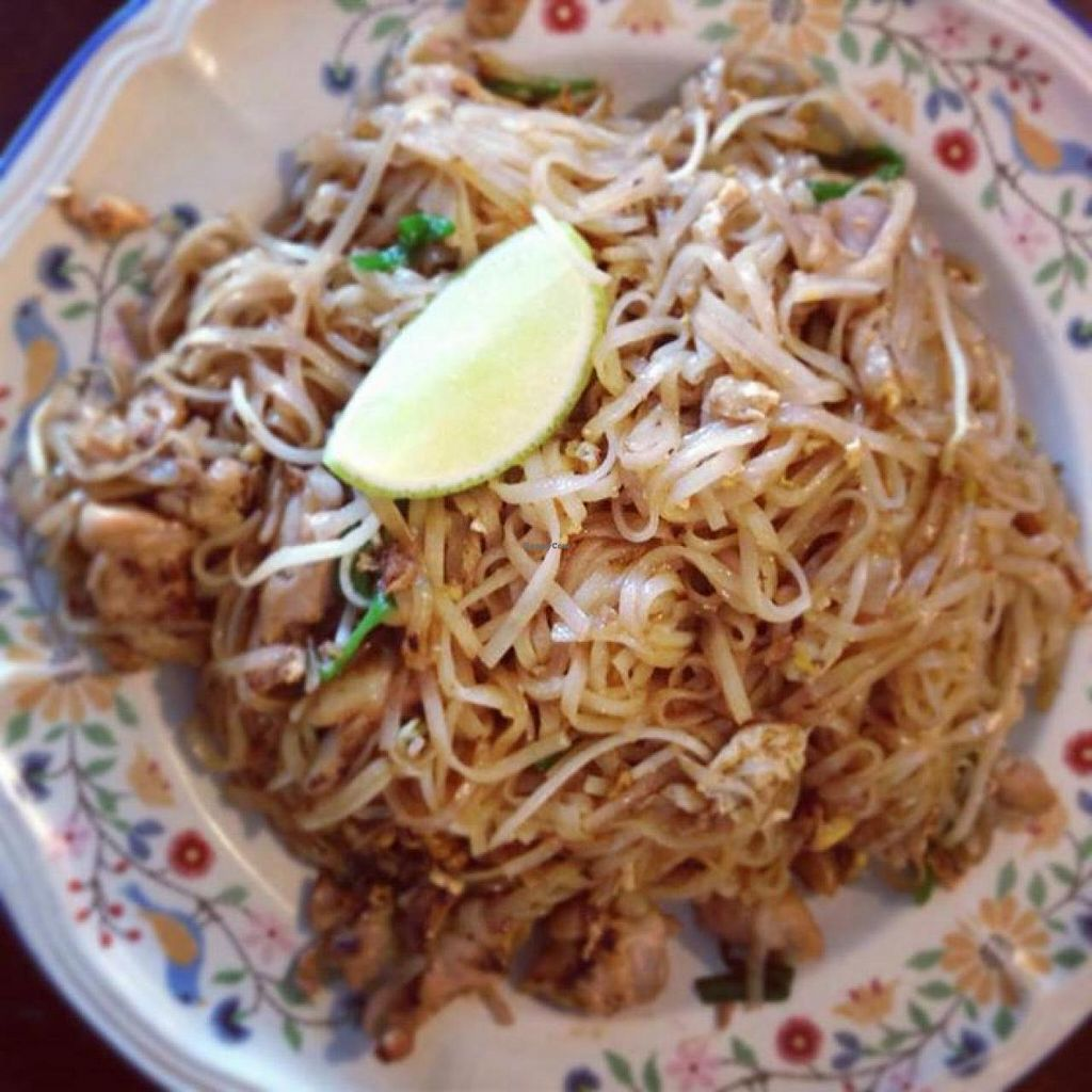 "Photo of Thai Fresh  by <a href=""/members/profile/community"">community</a> <br/>pad Thai <br/> April 3, 2014  - <a href='/contact/abuse/image/45672/66943'>Report</a>"