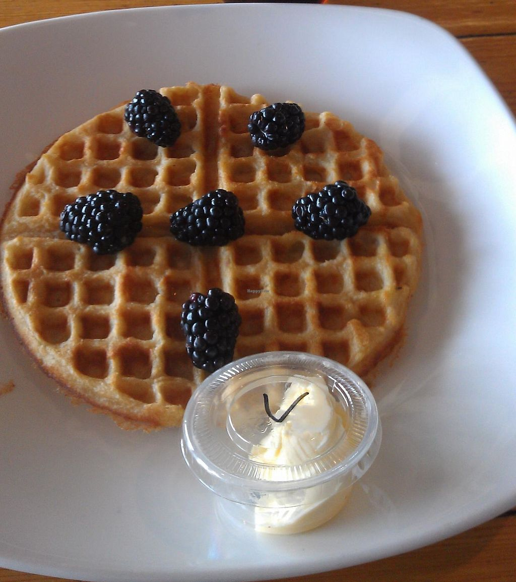 """Photo of Tiabi Coffee and Waffle Bar  by <a href=""""/members/profile/warmstorage"""">warmstorage</a> <br/>Vegan waffle with blackberries and lemon drizzle! <br/> April 3, 2014  - <a href='/contact/abuse/image/45690/207744'>Report</a>"""