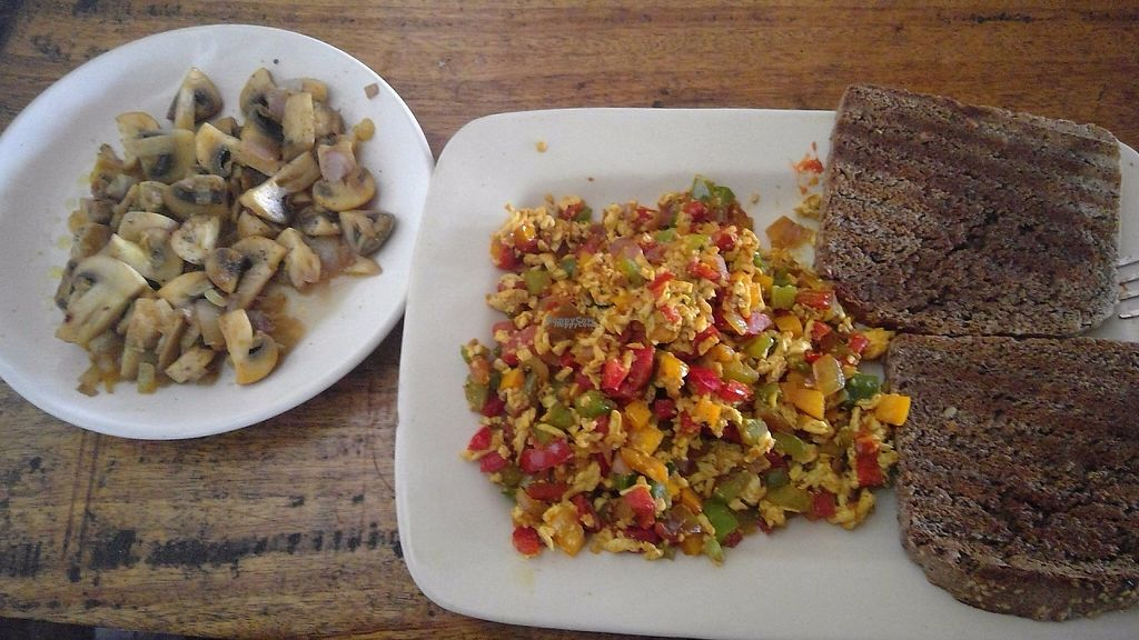 """Photo of The Dreaming Tree  by <a href=""""/members/profile/Thyge"""">Thyge</a> <br/>Tofu scramble (healthy breakfast) and fried mushrooms <br/> January 6, 2017  - <a href='/contact/abuse/image/45694/208612'>Report</a>"""