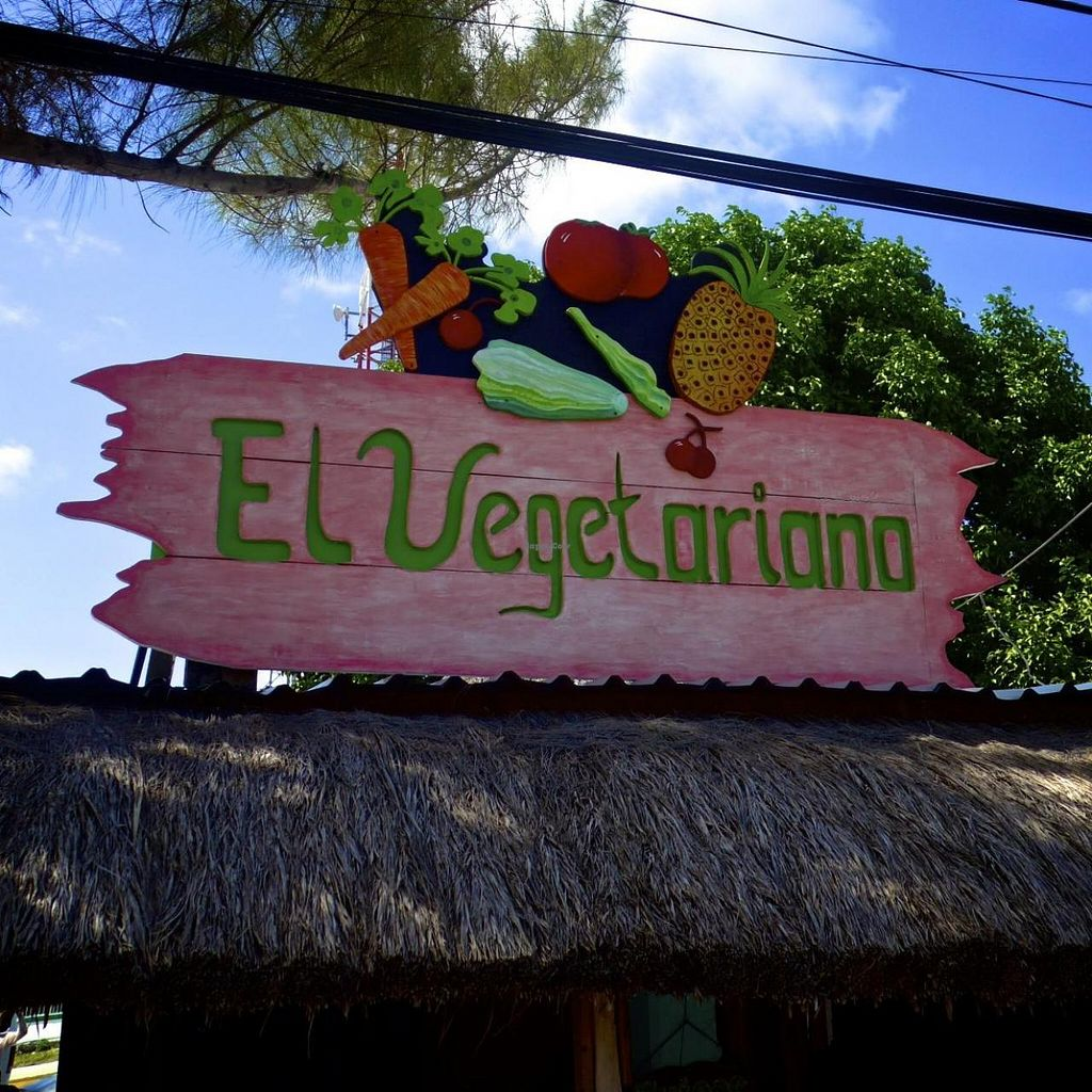 "Photo of El Vegetariano  by <a href=""/members/profile/LaPria"">LaPria</a> <br/>El Vegetariano Tulum <br/> May 8, 2014  - <a href='/contact/abuse/image/45726/69651'>Report</a>"