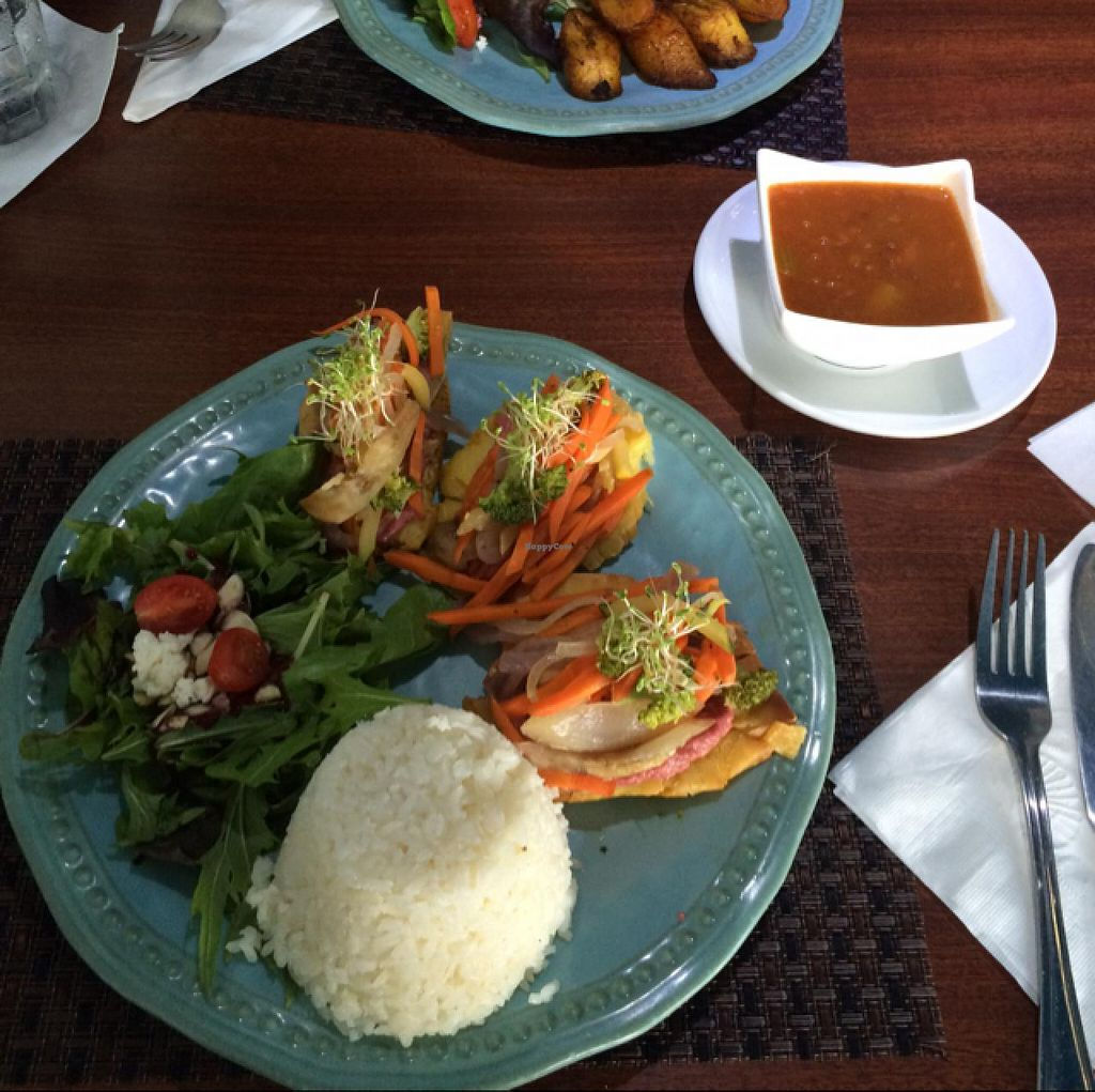 """Photo of Ocean Park Cafe  by <a href=""""/members/profile/Dirtyanddarling"""">Dirtyanddarling</a> <br/>bread fruit fritters! w beans and rice <br/> March 4, 2015  - <a href='/contact/abuse/image/45729/94873'>Report</a>"""