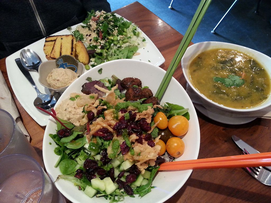 """Photo of Fresh on Eglinton  by <a href=""""/members/profile/Vegan%20GiGi"""">Vegan GiGi</a> <br/>Ultimate falafel salad. And large soup, salad, cornbread combo. Delicious <br/> May 8, 2017  - <a href='/contact/abuse/image/45740/257103'>Report</a>"""