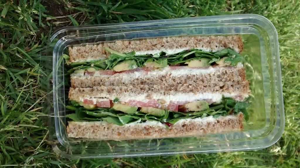 "Photo of Cocobeet  by <a href=""/members/profile/JonJon"">JonJon</a> <br/>Avocado and vegan cheese sandwich <br/> June 8, 2016  - <a href='/contact/abuse/image/45751/202414'>Report</a>"
