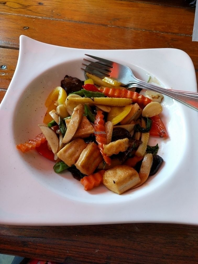 """Photo of Noom Restaurant  by <a href=""""/members/profile/Nausikaa"""">Nausikaa</a> <br/>Stir Fry Mushroom, Tofu, and Holy Basil <br/> October 21, 2016  - <a href='/contact/abuse/image/45816/183366'>Report</a>"""