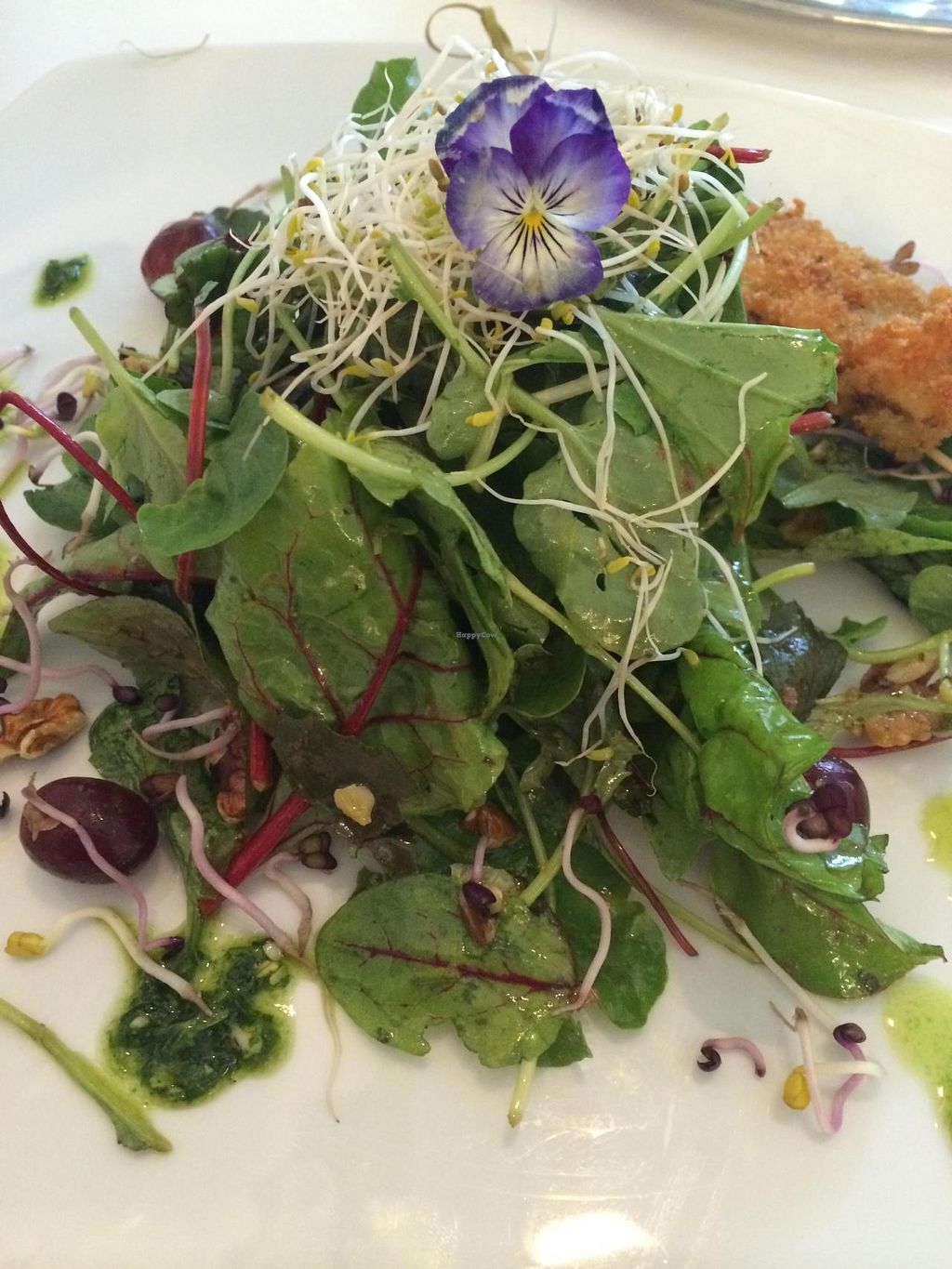 """Photo of The Green Garden  by <a href=""""/members/profile/JazzyCow"""">JazzyCow</a> <br/>One of the most gorgeous salads I've ever eaten! <br/> August 10, 2014  - <a href='/contact/abuse/image/45824/76612'>Report</a>"""