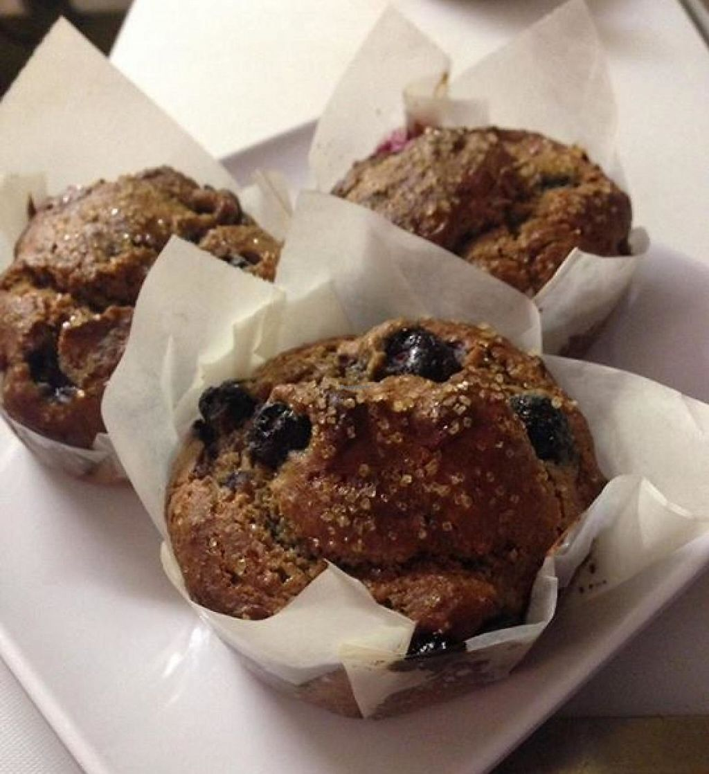 "Photo of The Scoop  by <a href=""/members/profile/community"">community</a> <br/>Homemade blueberry muffins! They are gluten free, dairy free, zero refined sugar <br/> April 11, 2014  - <a href='/contact/abuse/image/45837/233575'>Report</a>"