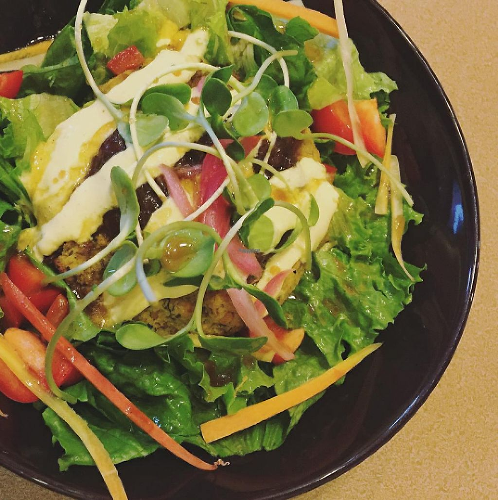 """Photo of CLOSED: Blossom Vegetarian Cafe  by <a href=""""/members/profile/tarsbo"""">tarsbo</a> <br/>Curried Lentil Burger on a bed of greens <br/> March 6, 2017  - <a href='/contact/abuse/image/45894/233513'>Report</a>"""