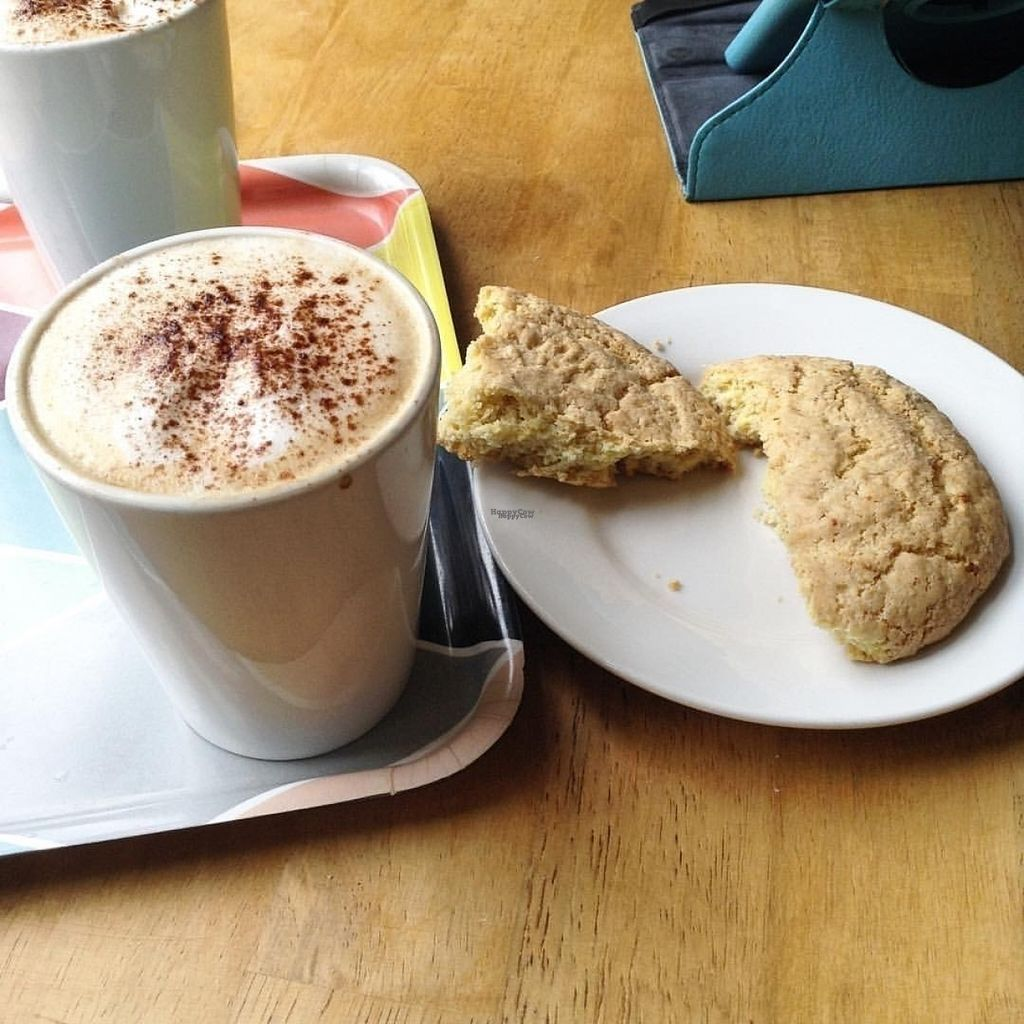 """Photo of Art Cafe  by <a href=""""/members/profile/Anacbordalo"""">Anacbordalo</a> <br/>Almond milk cappuccino and vegan cookies <br/> August 21, 2016  - <a href='/contact/abuse/image/45953/170362'>Report</a>"""