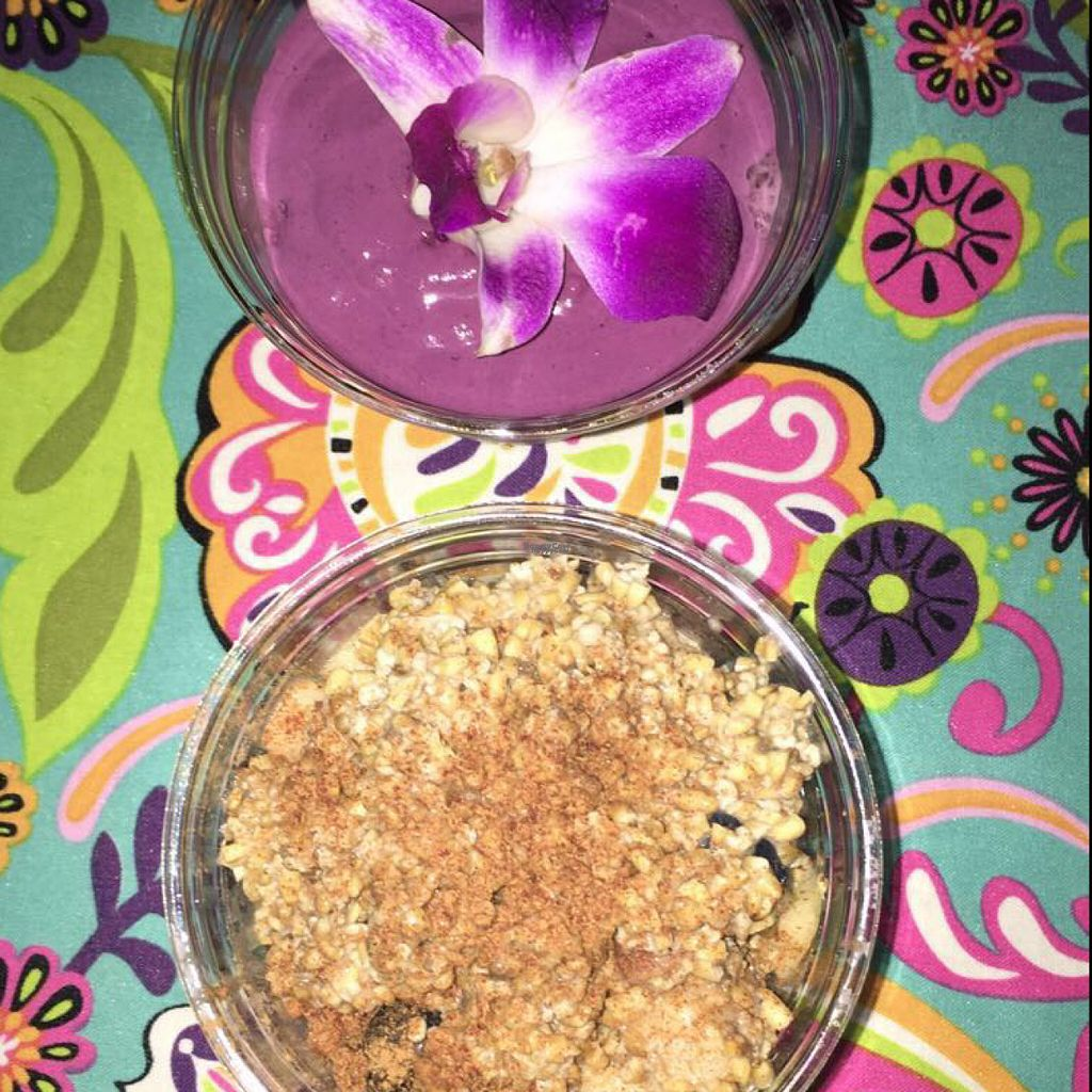 "Photo of Press'd - Plant Street Market  by <a href=""/members/profile/the_chill_banana"">the_chill_banana</a> <br/>triple berry chia mouse & blueberry almond butter breakfast bowl <br/> August 14, 2016  - <a href='/contact/abuse/image/45976/168617'>Report</a>"