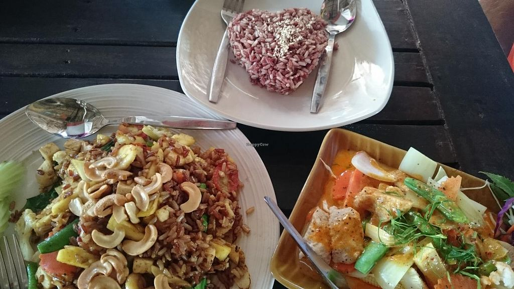 """Photo of Irie Bar and Restaurant  by <a href=""""/members/profile/tbonemeli"""">tbonemeli</a> <br/>Special Brown Fried rice and Chu Chi curry <br/> February 28, 2015  - <a href='/contact/abuse/image/46036/94400'>Report</a>"""