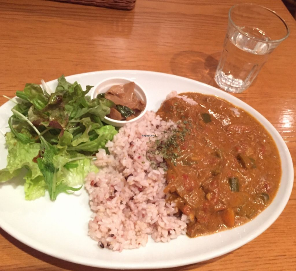 """Photo of CLOSED: From Earth Cafe OHANA  by <a href=""""/members/profile/Kimxula"""">Kimxula</a> <br/>curry <br/> April 19, 2016  - <a href='/contact/abuse/image/46043/145362'>Report</a>"""