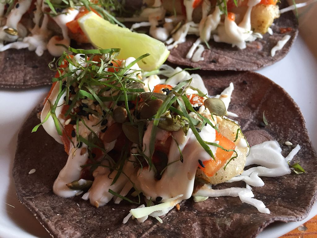"Photo of Smith & Daughters  by <a href=""/members/profile/Wuji_Luiji"">Wuji_Luiji</a> <br/>Tacos with hearts of palm, pineapple kimchi and lime crema <br/> February 10, 2018  - <a href='/contact/abuse/image/46071/357288'>Report</a>"