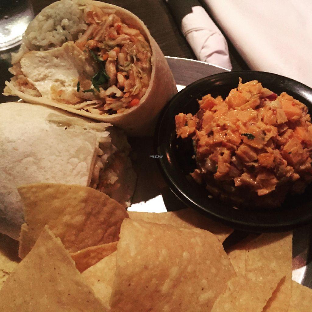 "Photo of Black Sheep Burrito and Brews  by <a href=""/members/profile/mvineyard"">mvineyard</a> <br/>Vegan Burrito  <br/> December 31, 2016  - <a href='/contact/abuse/image/46106/206402'>Report</a>"