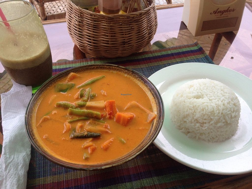 """Photo of OM Kampot  by <a href=""""/members/profile/vegan_ryan"""">vegan_ryan</a> <br/>Vegetable curry with rice <br/> July 17, 2016  - <a href='/contact/abuse/image/46146/160365'>Report</a>"""