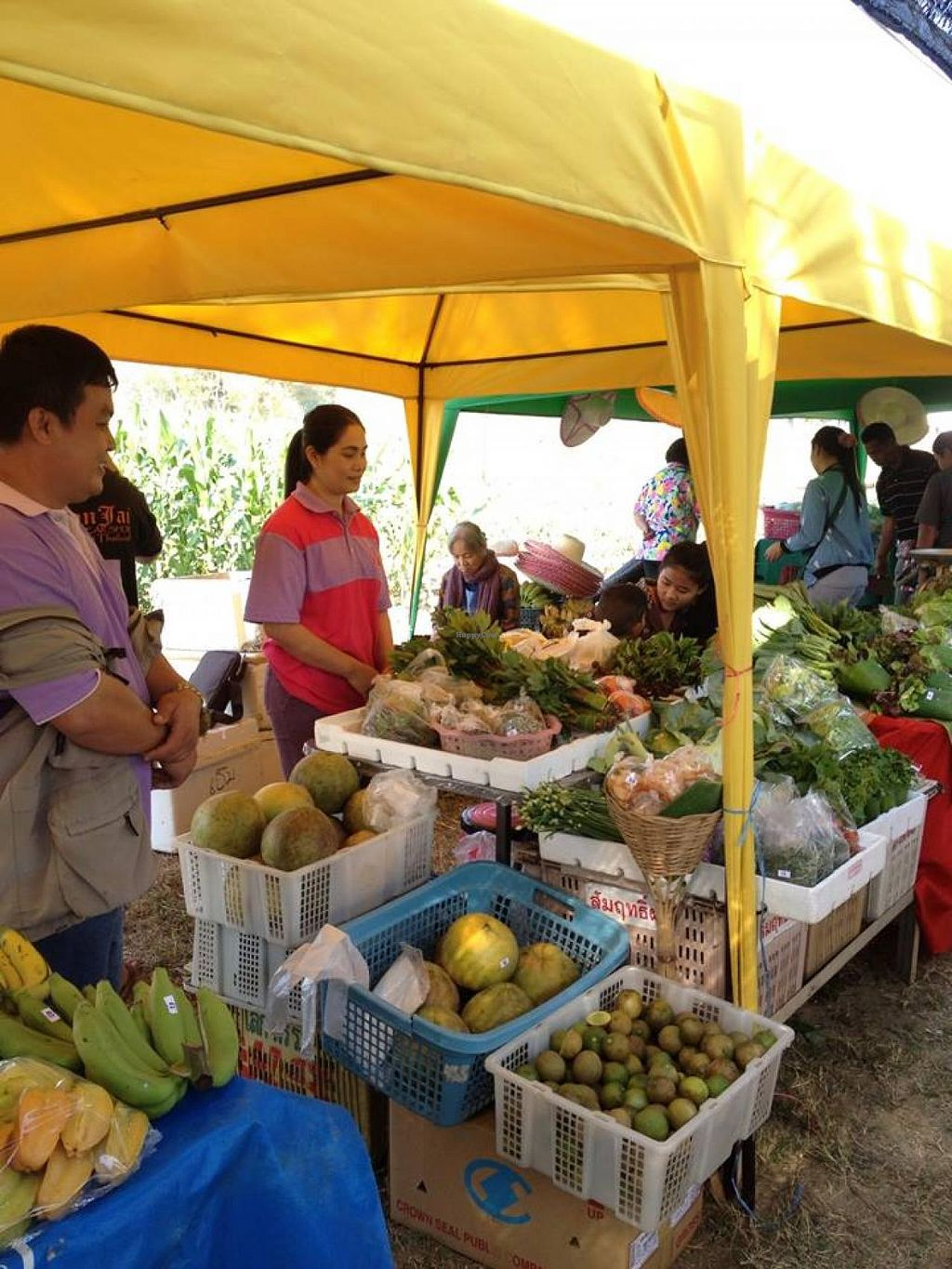 "Photo of Pesticide Free Farmers Market  by <a href=""/members/profile/community"">community</a> <br/>Pesticide Free Farmers Market <br/> March 30, 2014  - <a href='/contact/abuse/image/46211/66755'>Report</a>"