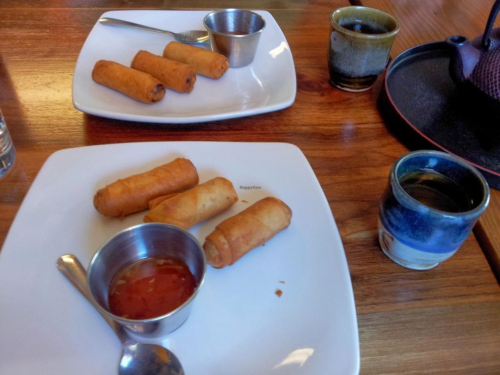 """Photo of Thai Grille  by <a href=""""/members/profile/Rifester"""">Rifester</a> <br/>Vegetarian Spring Rolls <br/> April 3, 2014  - <a href='/contact/abuse/image/46225/67001'>Report</a>"""