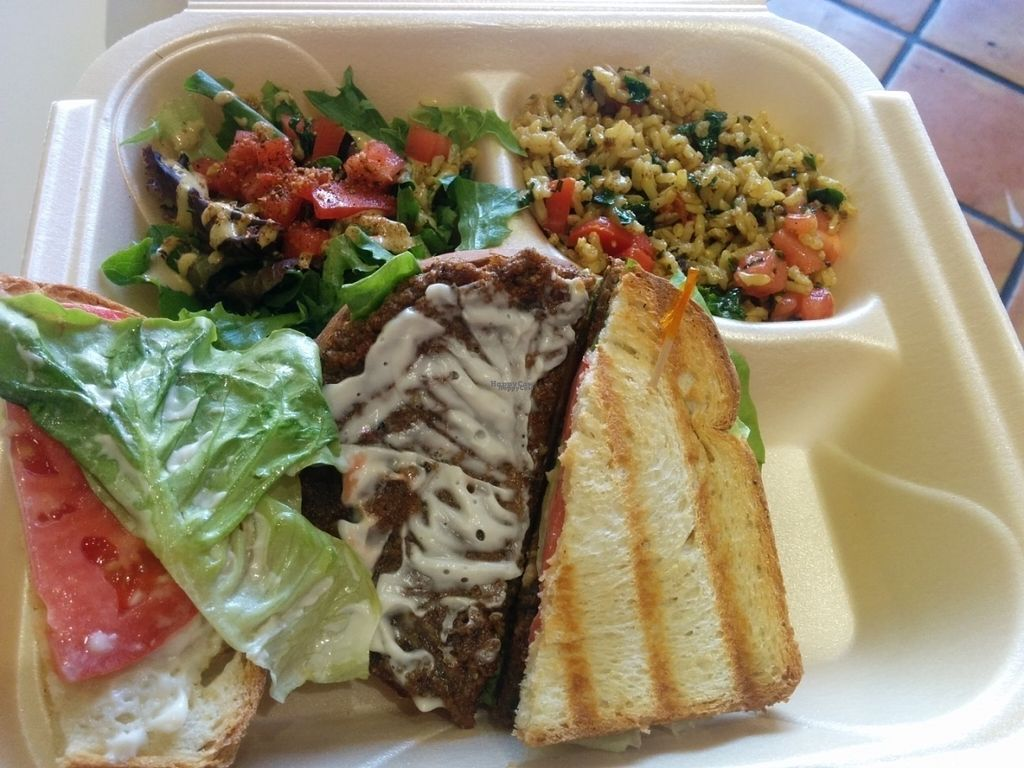 """Photo of The New Vegan  by <a href=""""/members/profile/MizzB"""">MizzB</a> <br/>Delicious portobello mushroom sandwich with salad, brown rice <br/> September 14, 2016  - <a href='/contact/abuse/image/46238/175750'>Report</a>"""