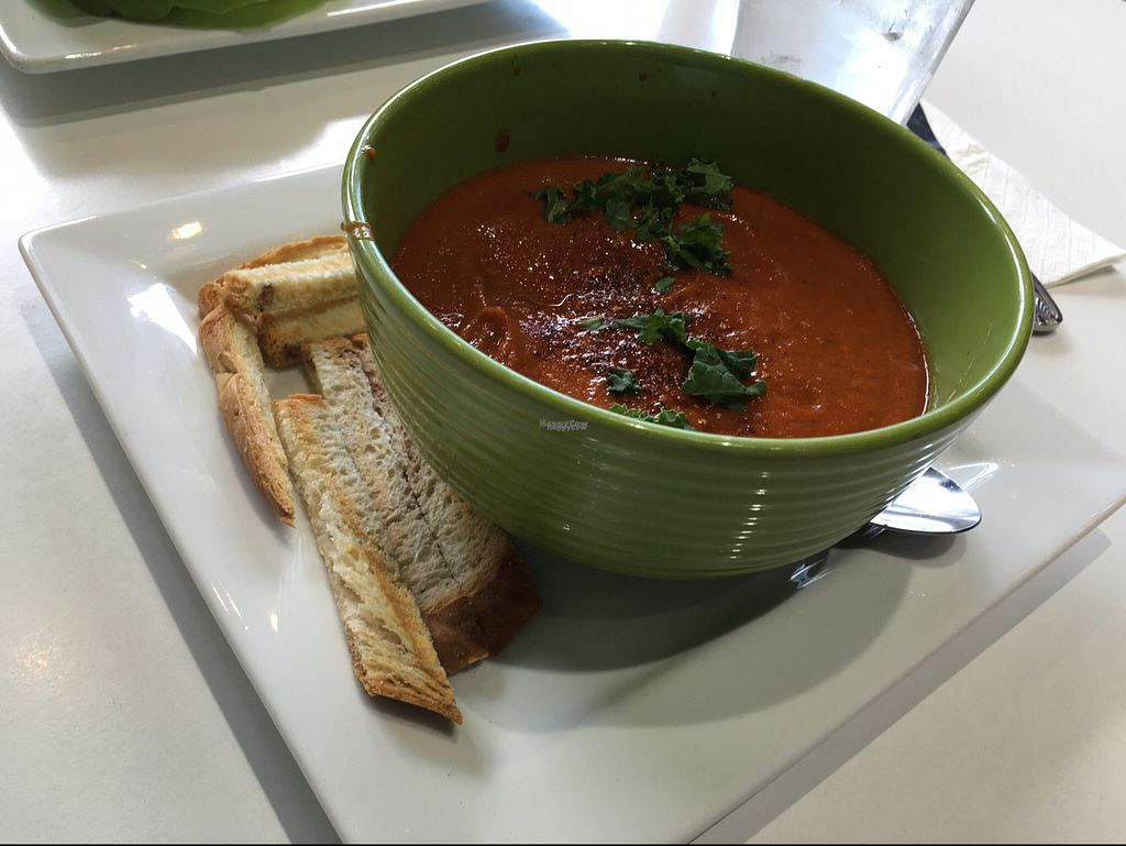 """Photo of The New Vegan  by <a href=""""/members/profile/HeartStrong"""">HeartStrong</a> <br/>Tomato soup <br/> October 1, 2016  - <a href='/contact/abuse/image/46238/179076'>Report</a>"""
