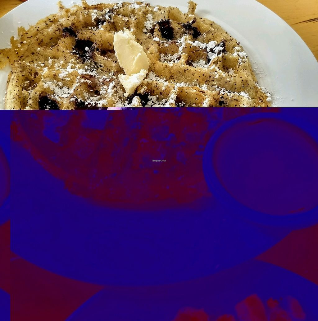 """Photo of East End Eatery  by <a href=""""/members/profile/JennyEats"""">JennyEats</a> <br/>vegan blueberry waffles <br/> February 21, 2018  - <a href='/contact/abuse/image/46245/362099'>Report</a>"""