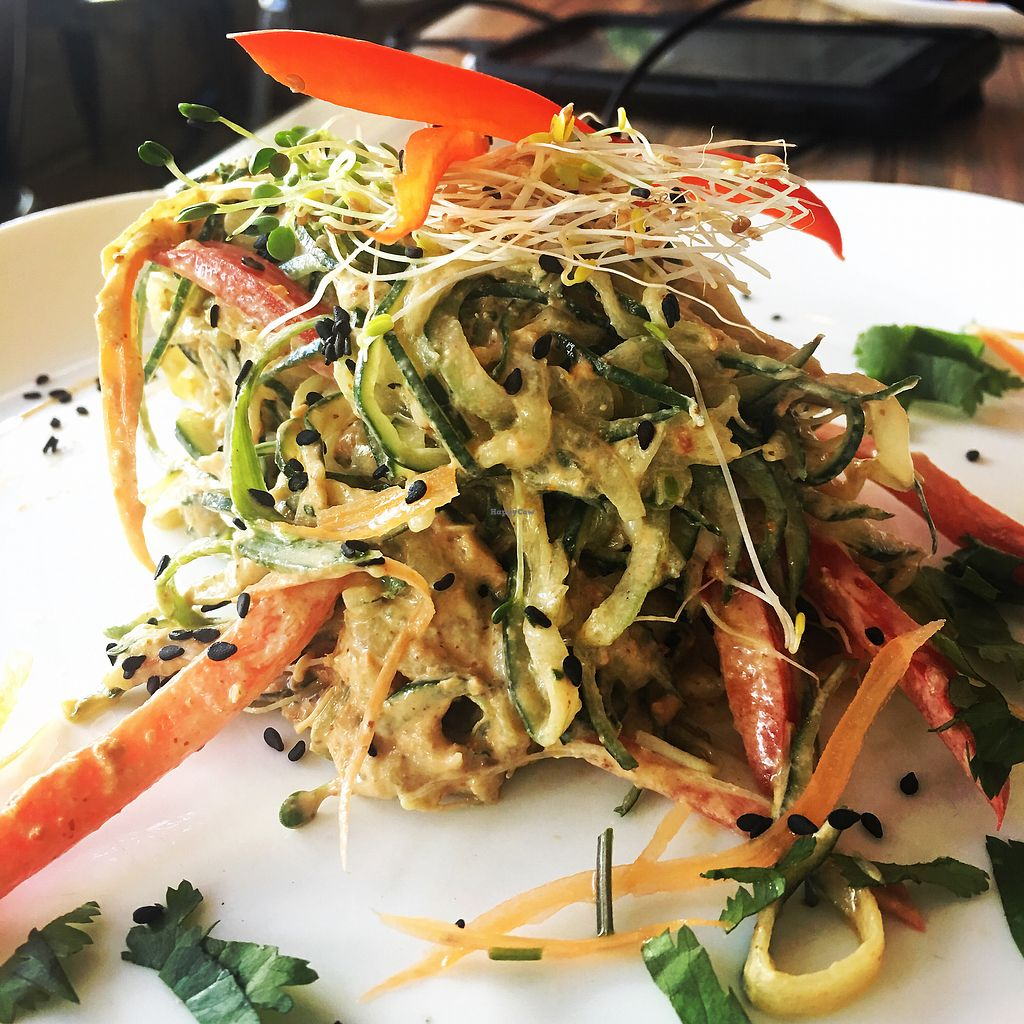 """Photo of Seed  by <a href=""""/members/profile/fbatzer%40gmail.com"""">fbatzer@gmail.com</a> <br/>Raw Pad Thai <br/> February 25, 2018  - <a href='/contact/abuse/image/46277/363414'>Report</a>"""