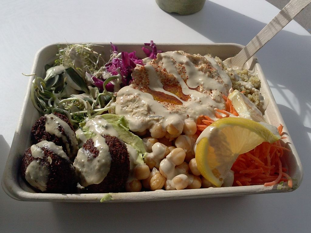 """Photo of Fala Bar  by <a href=""""/members/profile/Sonja%20and%20Dirk"""">Sonja and Dirk</a> <br/>Kalefornia salad with spicy falafel <br/> January 3, 2016  - <a href='/contact/abuse/image/46290/130912'>Report</a>"""