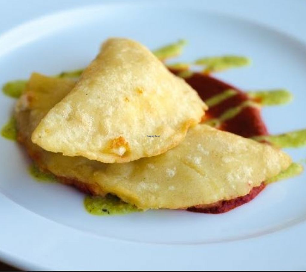 """Photo of Dos Perros  by <a href=""""/members/profile/turtleveg"""">turtleveg</a> <br/>Tomato masa empanadas stuffed with asparagus, mushrooms and jalapeno, with poblano salsa. This was the Dos Perros appetizer during the 2016 Bull City Vegan Chef Challenge <br/> June 9, 2016  - <a href='/contact/abuse/image/46299/214491'>Report</a>"""