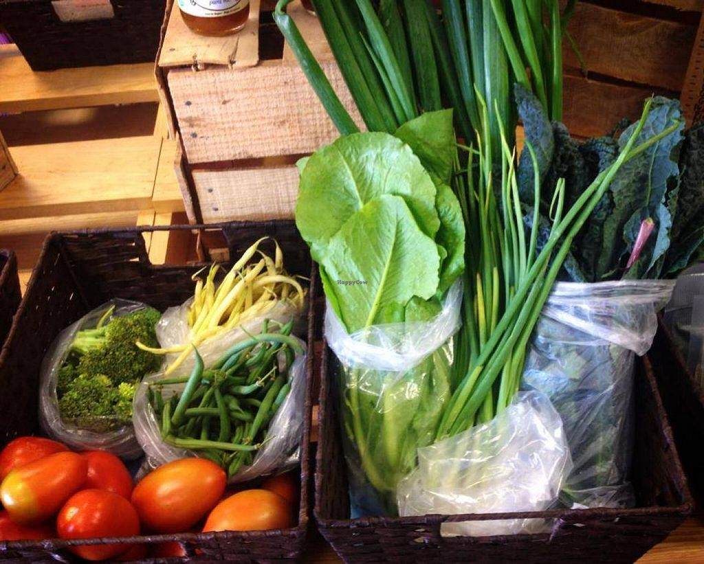 """Photo of CLOSED: Green Goddess Feel Good Market  by <a href=""""/members/profile/JoannaCoonFoxT"""">JoannaCoonFoxT</a> <br/>fresh local organic veggies delivered weekly <br/> April 5, 2014  - <a href='/contact/abuse/image/46341/67092'>Report</a>"""