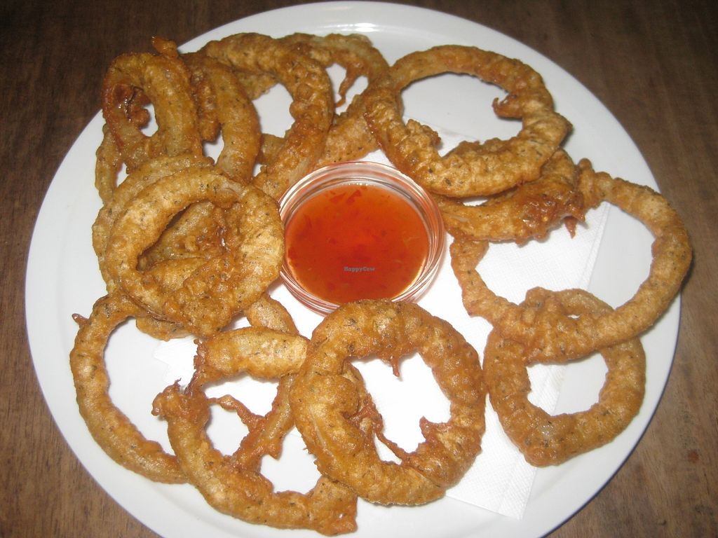 "Photo of CLOSED: Junk Food Cafe  by <a href=""/members/profile/jennyc32"">jennyc32</a> <br/>Onion rings <br/> September 13, 2015  - <a href='/contact/abuse/image/46362/117595'>Report</a>"