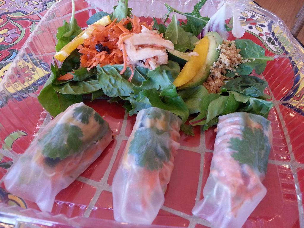 """Photo of New Earth Health Cafe  by <a href=""""/members/profile/eric"""">eric</a> <br/>raw rolls <br/> June 22, 2014  - <a href='/contact/abuse/image/46366/72491'>Report</a>"""