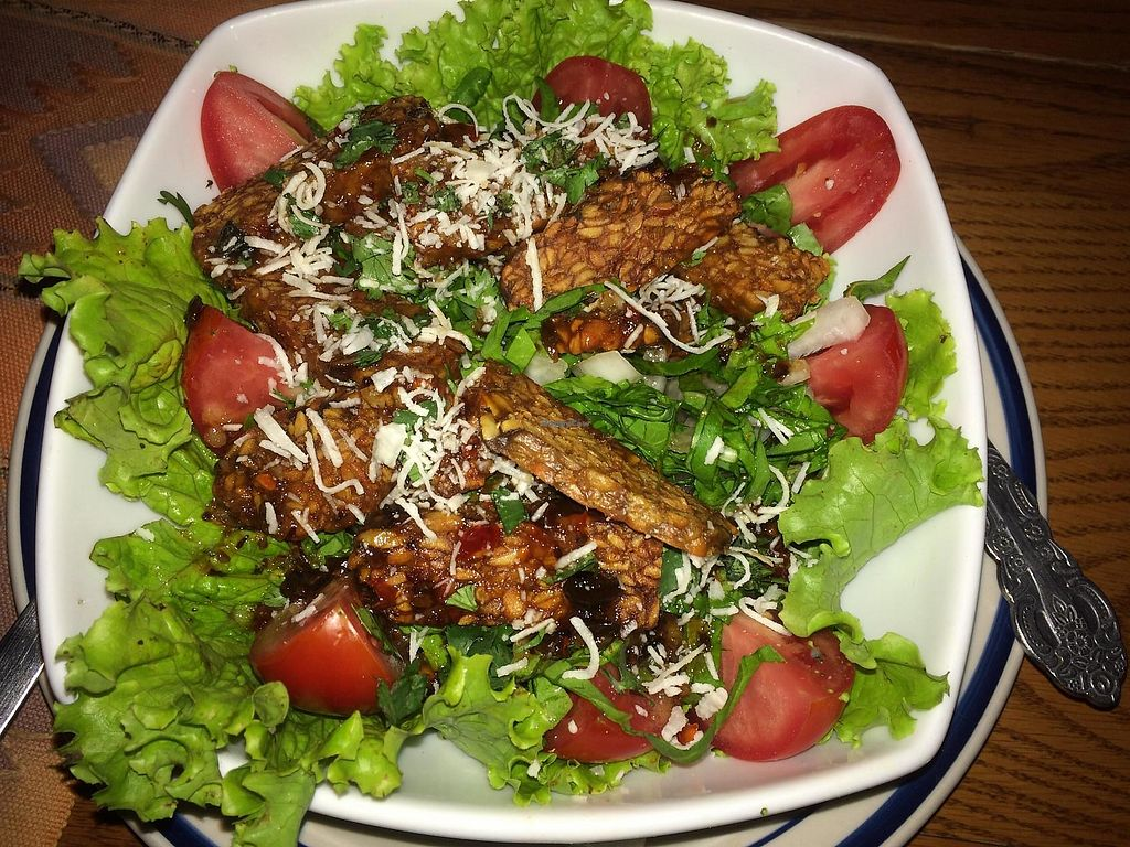 """Photo of Clover  by <a href=""""/members/profile/Tranaya"""">Tranaya</a> <br/>Thai Tempeh Salad <br/> July 4, 2014  - <a href='/contact/abuse/image/46369/275049'>Report</a>"""