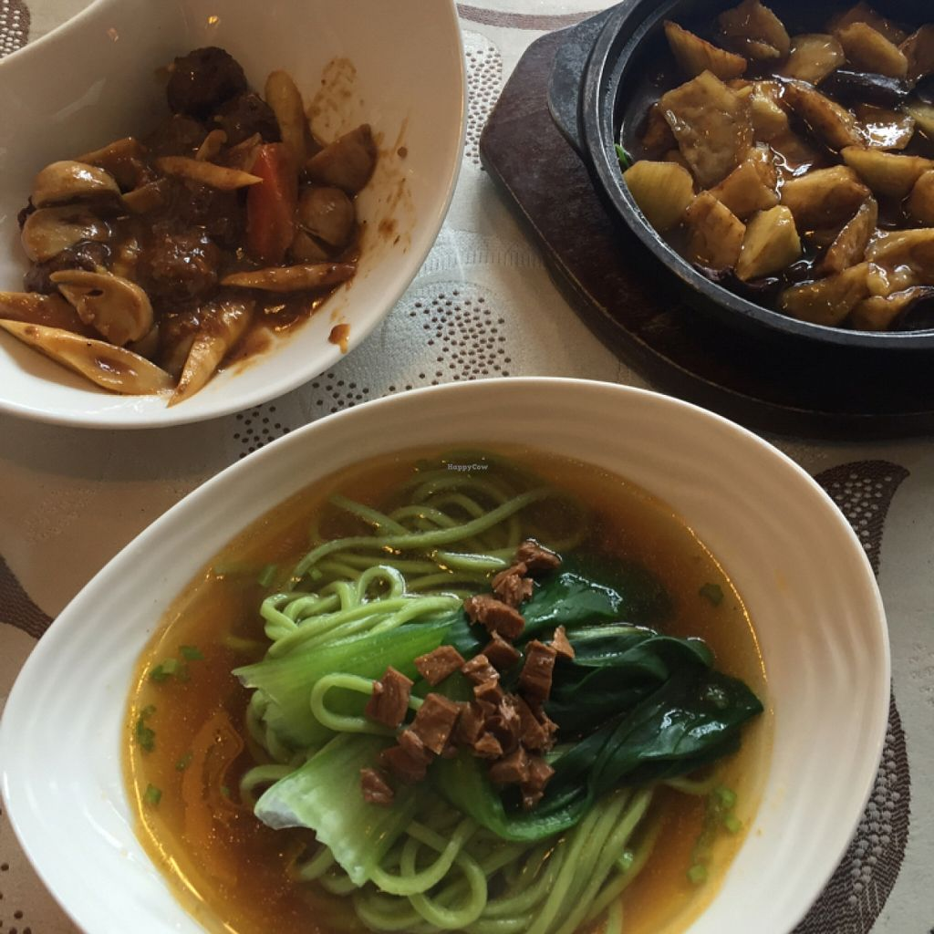 """Photo of HanDelin  by <a href=""""/members/profile/AnetteVegan"""">AnetteVegan</a> <br/>noodles, aubergine, mushroom balls <br/> April 10, 2016  - <a href='/contact/abuse/image/46434/143791'>Report</a>"""