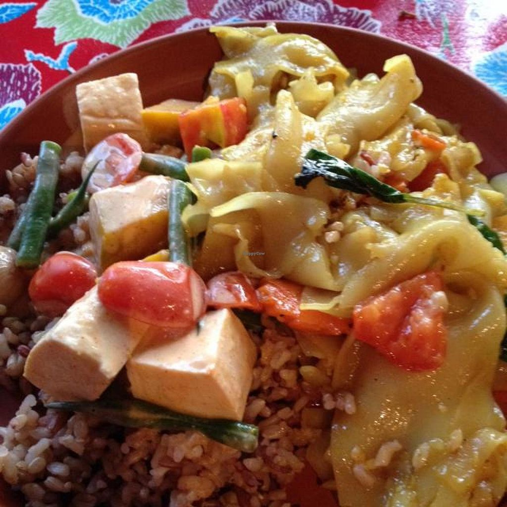 "Photo of Wild Rose of Thailand  by <a href=""/members/profile/VegFriends"">VegFriends</a> <br/>Curry Basil Noodle & Kabocha Curry - both vegan <br/> September 7, 2014  - <a href='/contact/abuse/image/46449/79376'>Report</a>"