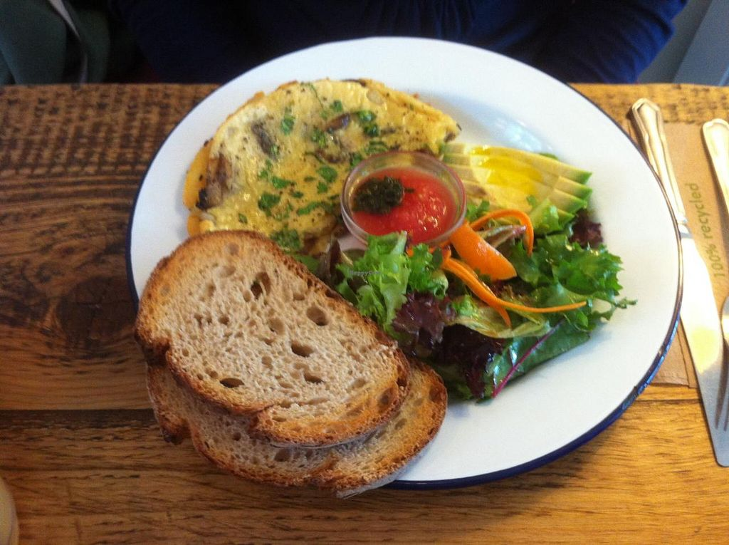 """Photo of EZ and Moss  by <a href=""""/members/profile/J-Veg"""">J-Veg</a> <br/>Vegan omelette <br/> July 27, 2015  - <a href='/contact/abuse/image/46491/111204'>Report</a>"""