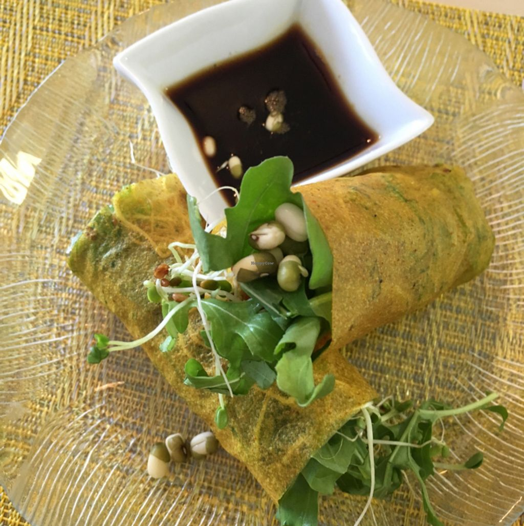 """Photo of Beauty of Sprouts  by <a href=""""/members/profile/dittev"""">dittev</a> <br/>spring rolls  <br/> November 24, 2015  - <a href='/contact/abuse/image/46509/126082'>Report</a>"""