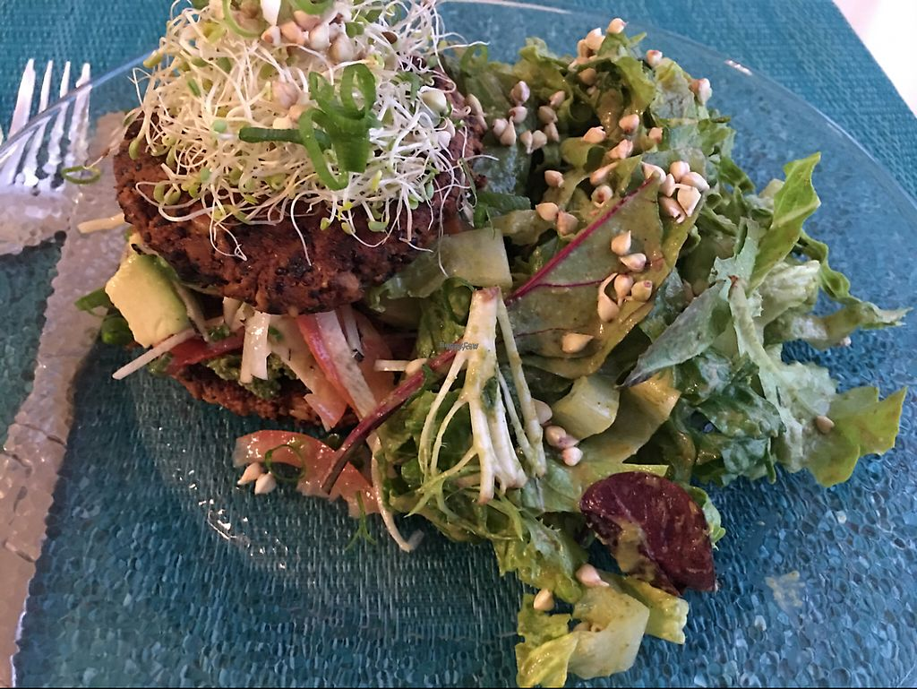 """Photo of Beauty of Sprouts  by <a href=""""/members/profile/Mdheiny"""">Mdheiny</a> <br/>Burger <br/> March 13, 2017  - <a href='/contact/abuse/image/46509/236016'>Report</a>"""