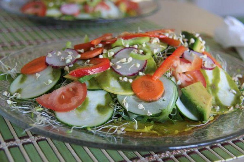 """Photo of Beauty of Sprouts  by <a href=""""/members/profile/trinitybourne"""">trinitybourne</a> <br/>Tasty salad with piece of onion flat bread at Beauty of Sprouts <br/> October 30, 2014  - <a href='/contact/abuse/image/46509/84242'>Report</a>"""