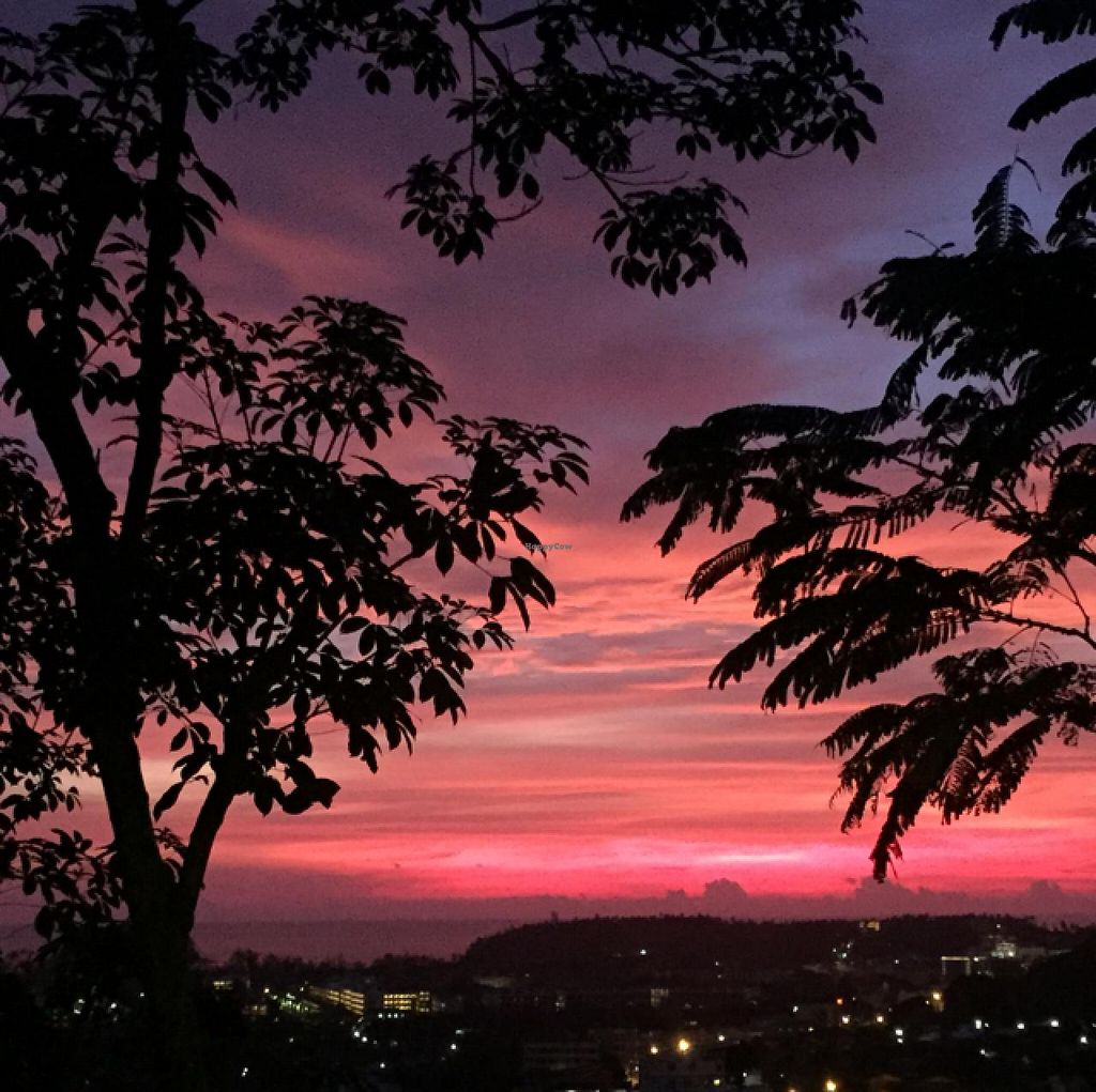 """Photo of Santosa  by <a href=""""/members/profile/fcfon"""">fcfon</a> <br/>view of the sunset from the cafe <br/> July 2, 2015  - <a href='/contact/abuse/image/46587/107965'>Report</a>"""