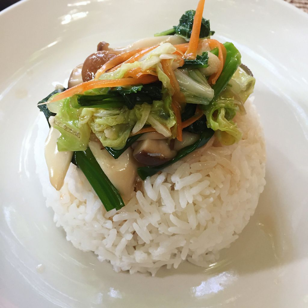 """Photo of Green Tiger House  by <a href=""""/members/profile/SaraFitz"""">SaraFitz</a> <br/>rice with vegetables  <br/> November 13, 2016  - <a href='/contact/abuse/image/46701/189563'>Report</a>"""