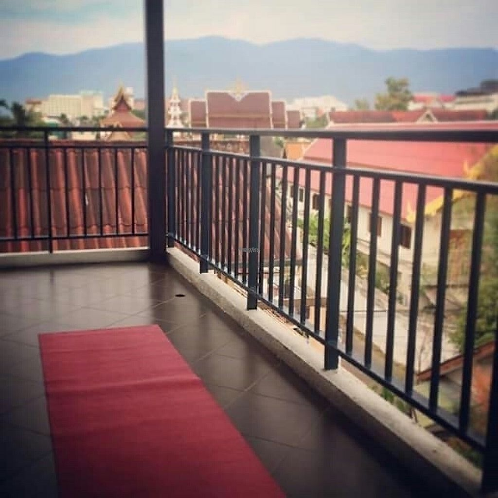"""Photo of Green Tiger House  by <a href=""""/members/profile/rcsmit"""">rcsmit</a> <br/>Perfect place to practice yoga <br/> January 1, 2017  - <a href='/contact/abuse/image/46701/206795'>Report</a>"""