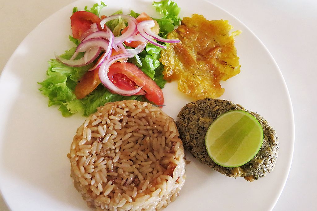 "Photo of Loving Hut  by <a href=""/members/profile/WandaE"">WandaE</a> <br/>Plátano, burger, coconut rice and salad <br/> July 20, 2017  - <a href='/contact/abuse/image/46727/282332'>Report</a>"