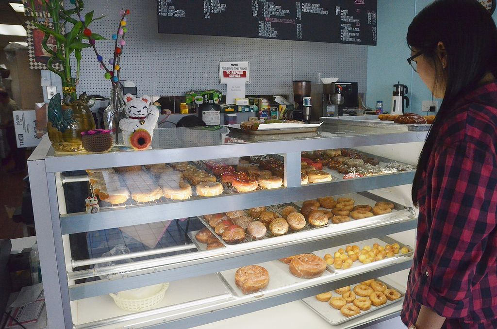 """Photo of Donut Panic  by <a href=""""/members/profile/KellyBone"""">KellyBone</a> <br/>Vegan Donut Case <br/> November 27, 2017  - <a href='/contact/abuse/image/46729/329599'>Report</a>"""