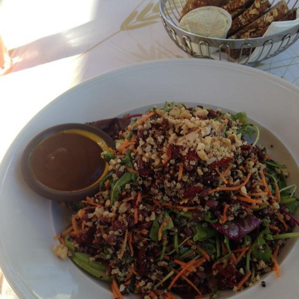 """Photo of CLOSED: Cafe Louise - Ramat Aviv  by <a href=""""/members/profile/Brok%20O.%20Lee"""">Brok O. Lee</a> <br/>Super Food Health Salad <br/> September 15, 2014  - <a href='/contact/abuse/image/46870/79978'>Report</a>"""