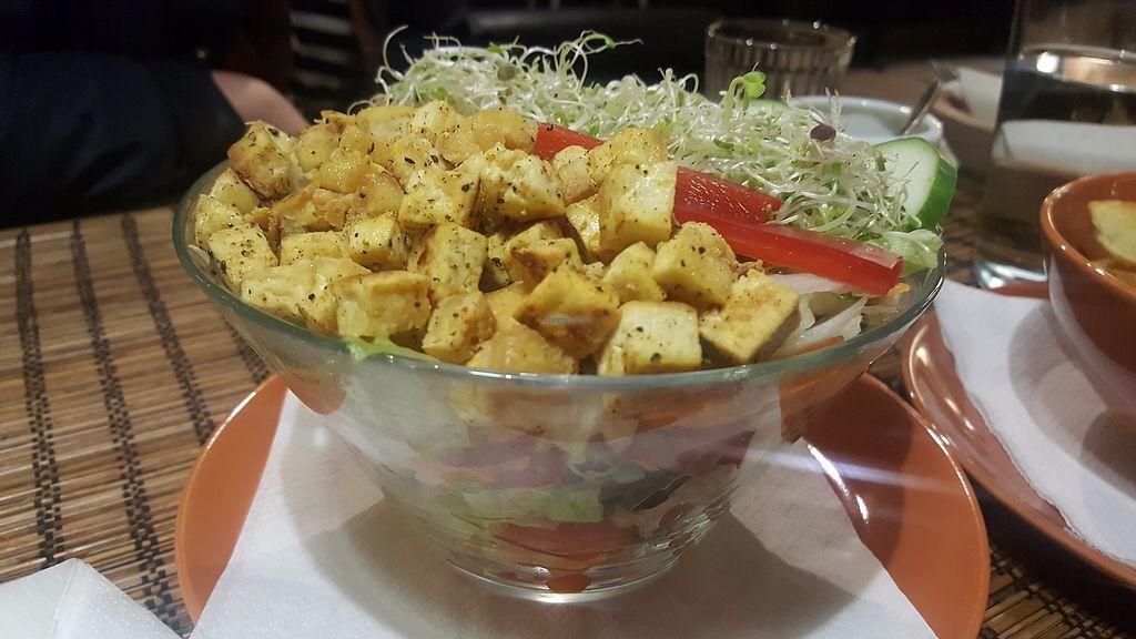 "Photo of Kozmosz Vegan Etterem  by <a href=""/members/profile/LTJ889"">LTJ889</a> <br/>Garden salad with tofu <br/> September 22, 2017  - <a href='/contact/abuse/image/46900/307213'>Report</a>"