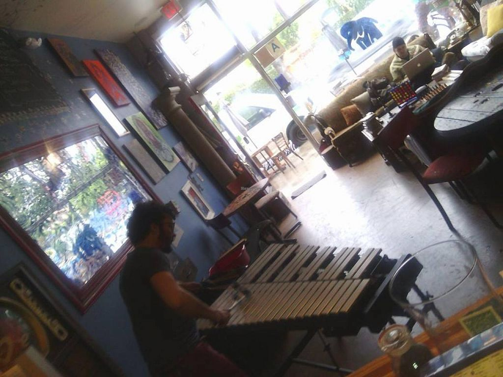 """Photo of Blu Elefant Cafe  by <a href=""""/members/profile/community"""">community</a> <br/>Blu Elefant Cafe <br/> April 27, 2014  - <a href='/contact/abuse/image/46915/68795'>Report</a>"""