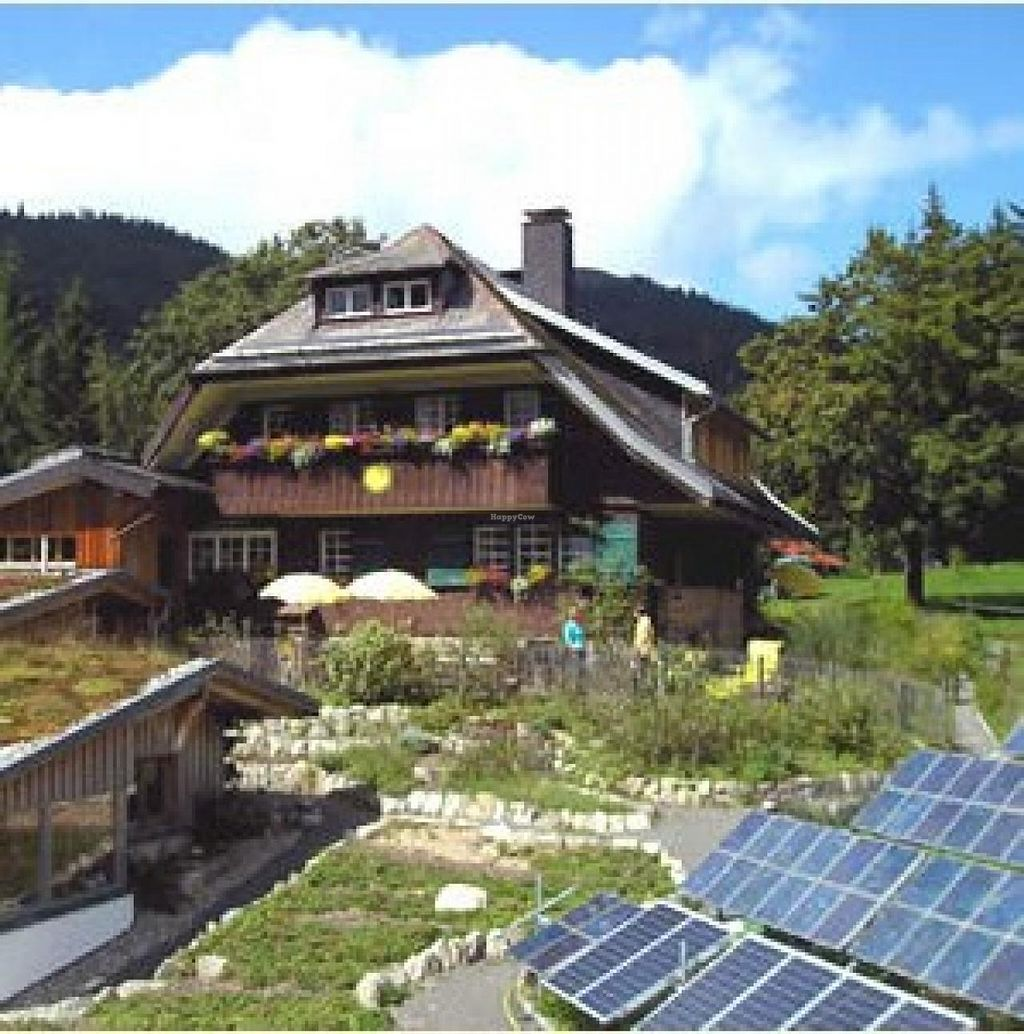 "Photo of Haus Sonne  by <a href=""/members/profile/community"">community</a> <br/>Haus Sonne <br/> June 11, 2014  - <a href='/contact/abuse/image/46981/71859'>Report</a>"