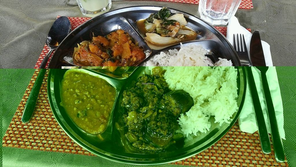 "Photo of GoGreen  by <a href=""/members/profile/beat"">beat</a> <br/>Simply wow: Tina's Indian cuisine magic  <br/> January 17, 2018  - <a href='/contact/abuse/image/46994/347683'>Report</a>"