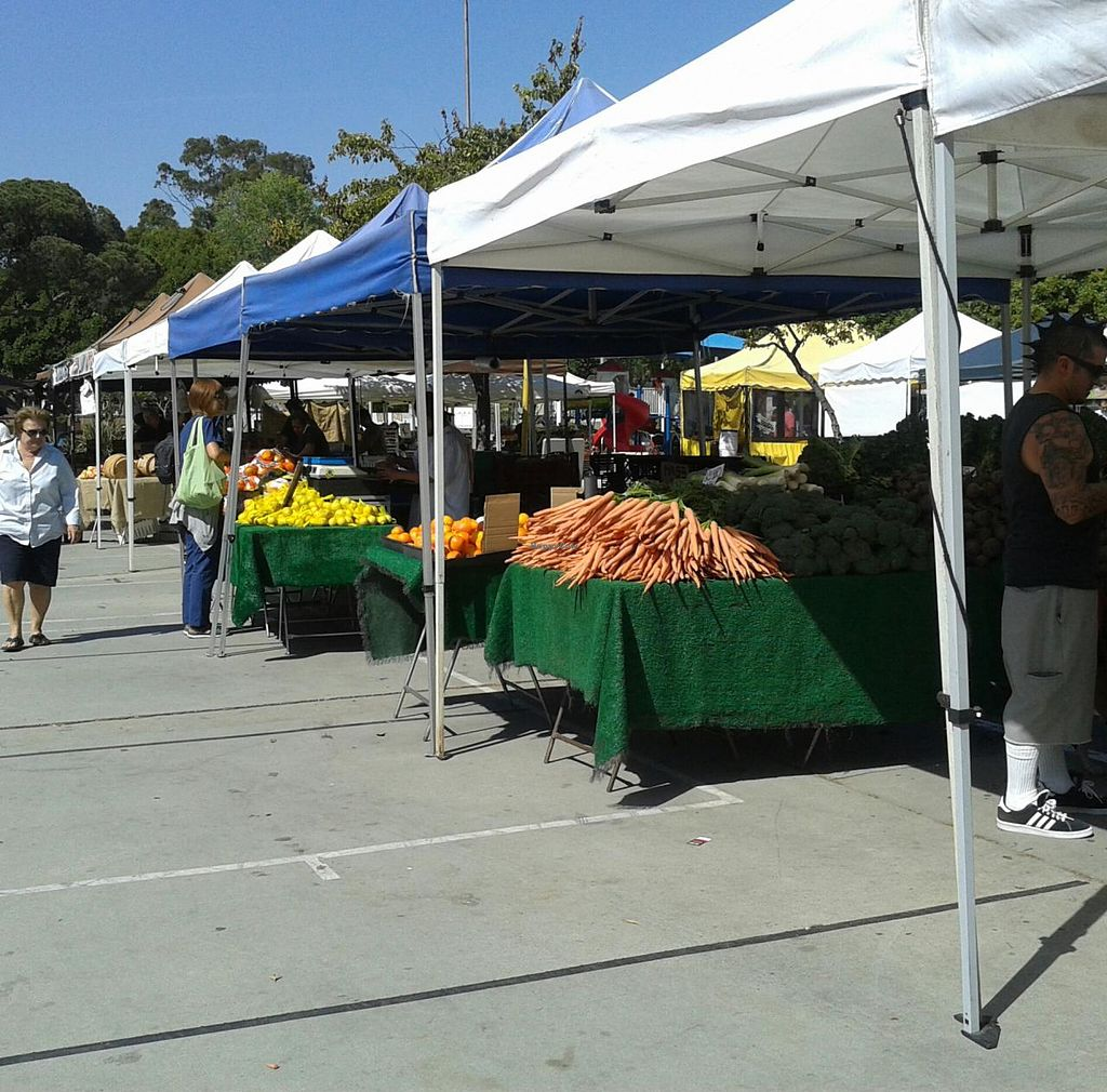 "Photo of Local Harvest Farmers Markets  by <a href=""/members/profile/chobesoy"">chobesoy</a> <br/>veggies! <br/> May 1, 2014  - <a href='/contact/abuse/image/47000/69095'>Report</a>"