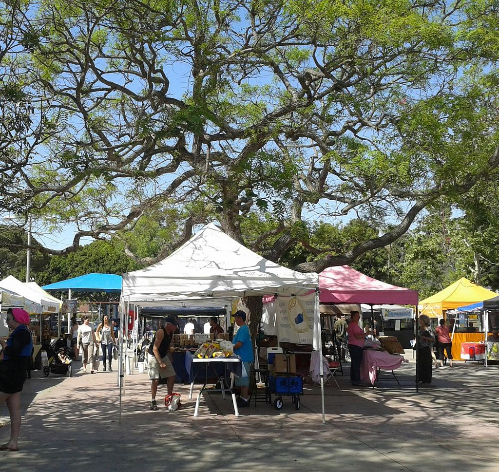 "Photo of Local Harvest Farmers Markets  by <a href=""/members/profile/chobesoy"">chobesoy</a> <br/>1st street entrance <br/> May 1, 2014  - <a href='/contact/abuse/image/47000/69096'>Report</a>"
