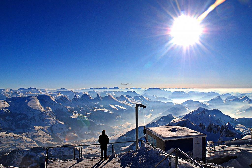 """Photo of Sonnmatt Bergpension  by <a href=""""/members/profile/Sonnmatt%20Bergpension"""">Sonnmatt Bergpension</a> <br/>View from Säntis, a mountain nearby. The fascianating view will take your breat away.  <br/> July 5, 2015  - <a href='/contact/abuse/image/47042/108206'>Report</a>"""