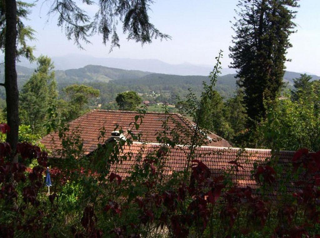 "Photo of Greystones-Villa Ayurveda-Kurzentrum  by <a href=""/members/profile/community"">community</a> <br/>Greystones-Villa Ayurveda-Kurzentrum <br/> June 17, 2014  - <a href='/contact/abuse/image/47154/72173'>Report</a>"